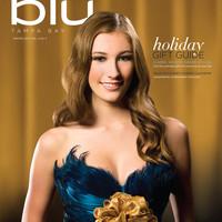 Blu 1210 cover