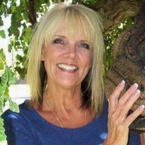 Debbie Wilson Hair Stylist Paradise Plaza Sarasota