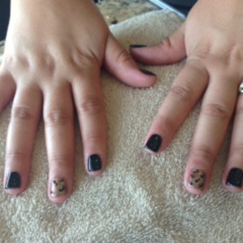 Shellac manicure with leopard print accent nail